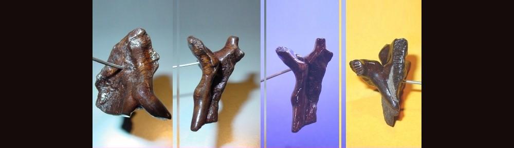 Objekt aus Wurzelholz